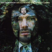 Van Morrison - I've Been Working