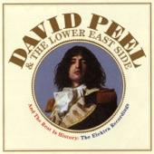 David Peel and The Lower East Side - I Like Marijuana
