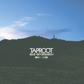 Taproot - April Suits