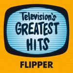 Television's Greatest Hits Band - Flipper