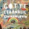 Learnalilgivinanlovin (Passion Pit Mix) - Single, Gotye