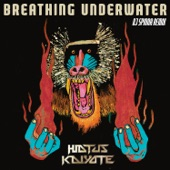Breathing Underwater (DJ Spinna Galactic Soul Remix) - Single
