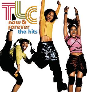 TLC - Baby-Baby-Baby (Radio Edit)
