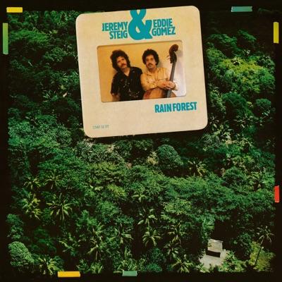 Rain Forest - Eddie Gomez