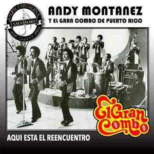 El Gran Combo de Puerto Rico & Andy Montanez - Un Verano En Nueva York