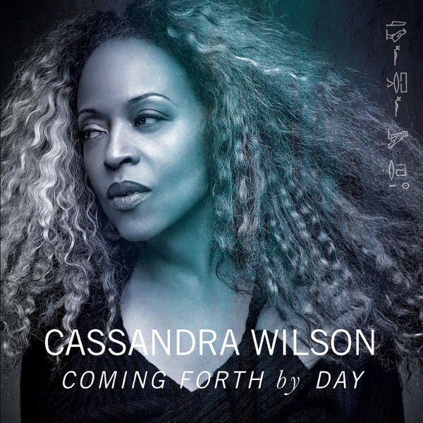 Cassandra Wilson - Crazy He Calls Me