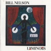 Bill Nelson - Bright Sparks