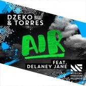 Air (feat. Delaney Jane) - Single