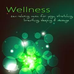 Wellness (Zen Relaxing Music for Yoga, Stretching, Breathing, Sleeping & Massage)