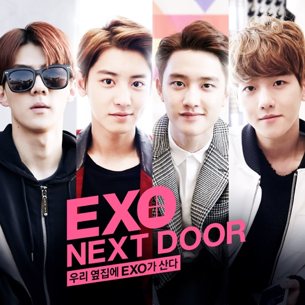 LOVE ME RIGHT - The 2nd Album Repackage by EXO