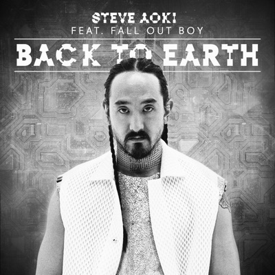 Back to Earth (feat. Fall Out Boy) [Remixes] - Single - Steve Aoki