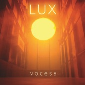 Voces8 - Dubra: Ave Maria 1
