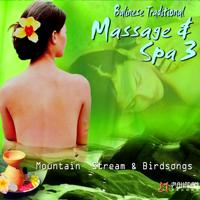 I Gusti Sudarsana - Balinese Traditional Massage & Spa, Vol. 3 artwork