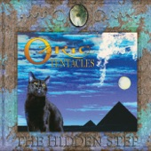 Ozric Tentacles - Holohedron