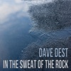 Dave Dest - Here I Go Again on My Own