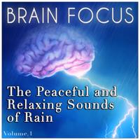 Rain - The Peaceful & Relaxing Sounds of Rain - Brain Focus artwork