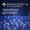 KABB - Apostlenes Gjerninger (Bibel2011 - Bibelens skrifter 44 - Det Nye Testamentet) artwork
