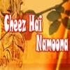 Cheez Hai Namoona