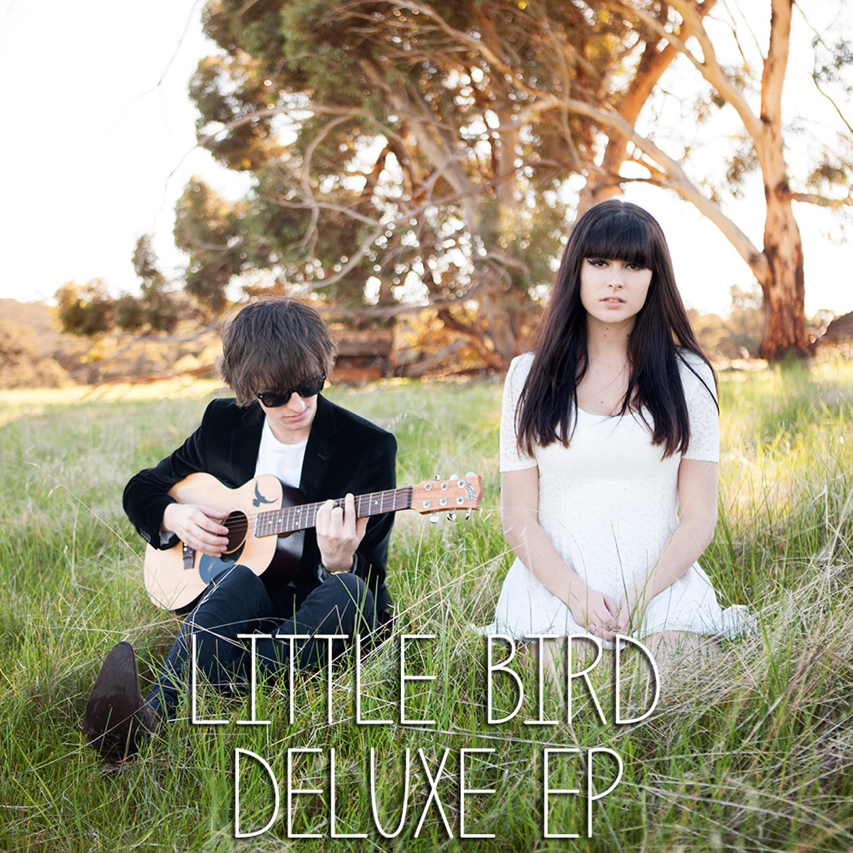 Little Bird Deluxe Little Bird CD cover