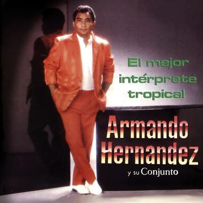 El Mejor Intérprete Tropical - Armando Hernandez