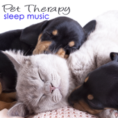 Pet Therapy Sleep Music – Sleeping Animals Healing Music for Dogs & Music for Cats with Sounds of Nature (Birds, Sea Waves & Gentle Rain)