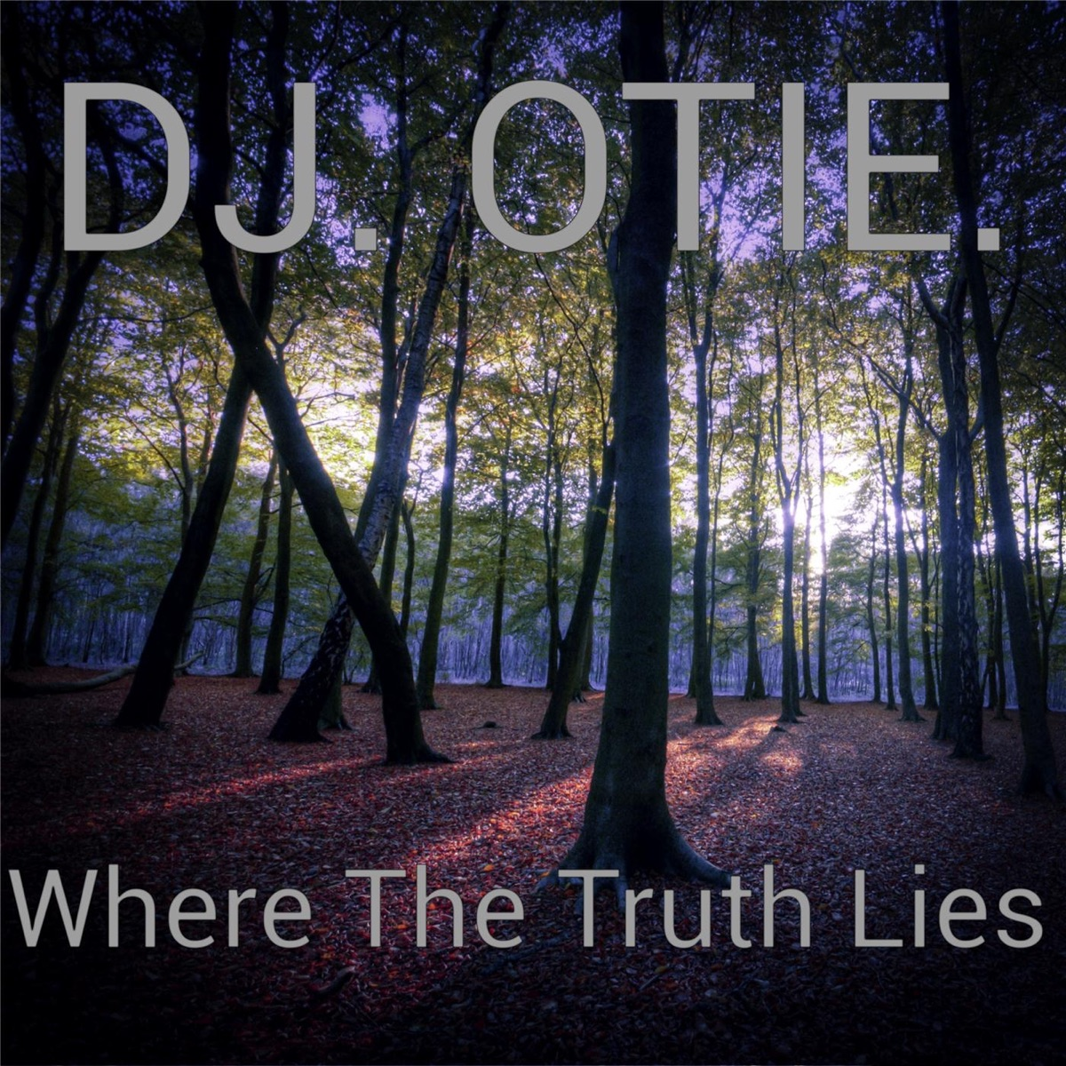 Where the Truth Lies EP DJ Otie CD cover