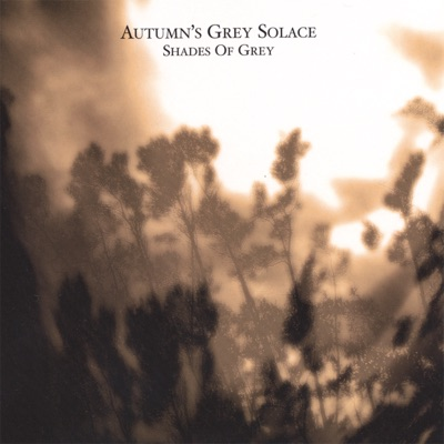 Shades of Grey - Autumn's Grey Solace