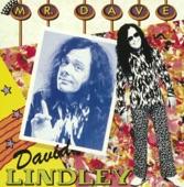 David Lindley - Pretty Girl Rules The World