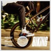 Biking (feat. JAY Z & Tyler, the Creator) - Single ジャケット画像