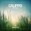Solstice (Remixes) - EP, Calippo