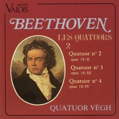 6 String Quartets, Op. 18, No. 2 in G Major: III. Scherzo. Allegro