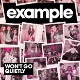 Won't Go Quietly - Single