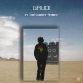 Gaudi - Why U Wanna Run (feat. Danny Ladwa)