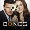 Bones, Season 12 - Synopsis and Reviews