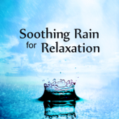 Soothing Rain for Relaxation: Sounds of Nature for Mindfulness Meditation, Yoga Training, Sleep Aid, Stress Relief, Chakra Balancing