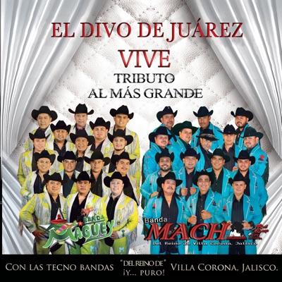 El divo de Juárez vive: Tributo al Más Grande - Banda Maguey