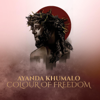 Ayanda Khumalo - We Will Go artwork
