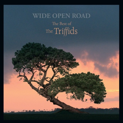 Wide Open Road - The Best of the Triffids - The Triffids