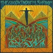 The Good Kind of Mushroom - Enoki Grove