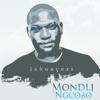 Mondli Ngcobo - Inkanyezi artwork
