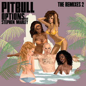 Pitbull - Options feat. Stephen Marley [Damaged Goods Remix]