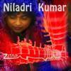 Niladri Kumar - Zitar artwork