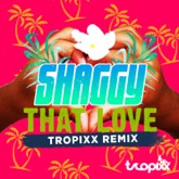 That Love (Tropixx Remix) - Single