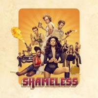 Télécharger Shameless, Saison 6 (VF) Episode 1