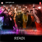Party All Night - Remix