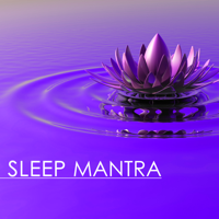 Dominique Mantra - Sleep Mantra - Best New Age Music Therapy, Tibetan Buddhist Chanting and Singing Bowls artwork