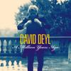 David Deyl - A Million Years Ago portada