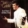 En el Palacio de Bellas Artes (En Vivo) - Juan Gabriel