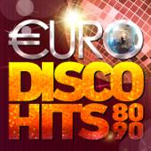 Various Artists - Euro Disco Hits 80-90's