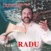 Radu Constantin - Heal the World Grafik
